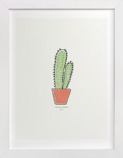 Cactus fig. 2  Art Print