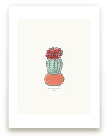 Cactus fig. 3 by Stacey Meacham