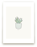 Succulent fig. 3 by Stacey Meacham