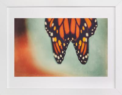 Monarch Study #6  Art Print