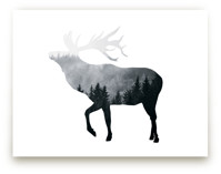Silver Elk