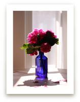 Blue Vase Still Life Ph... by Becky Nimoy