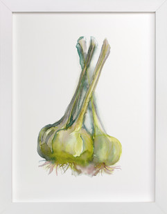 Glorious Garlic  Art Print