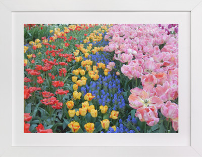 Pretty Garden 2  Art Print