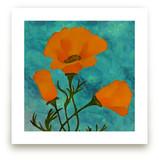 Bud & Bloom Poppies by Debb W