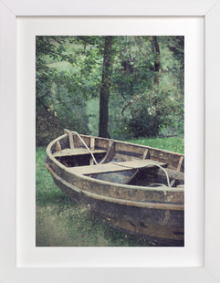Water Penny  Art Print