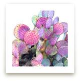 Bright Cactus by Michelle Jean
