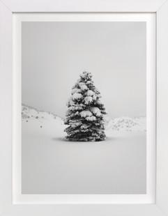 Tranquil Snow III  Art Print