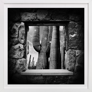 The Lookout (Square)  Art Print