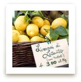 Limoni di Levanto by Three Kisses Studio