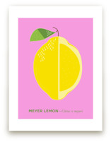 Bold Lemon Print by Gaucho Works