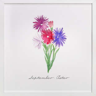September Aster  Art Print
