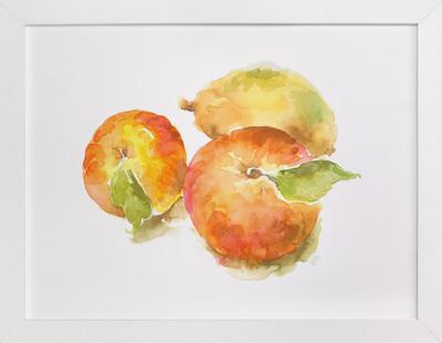 Ranch Apples  Art Print