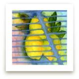 Lemon Zest by Me Amelia
