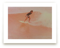 Rose Surf King by Annie Seaton