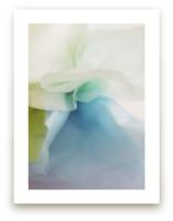 Paper Flora by Karen Kardatzke