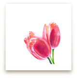 Coral Tulips by Jenny Partrite