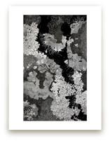 Lichen Rocks by Janie Allen