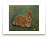 Opie the Rabbit by Shelly Gerritsma