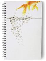 Aquatic High Jump by Deborah Chou