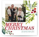 Holly Christmas by Sarah Lenger