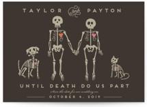 Cat Dog Skeletons by Katie Zimpel