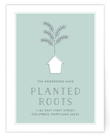 Planted Roots by Bethany Anderson