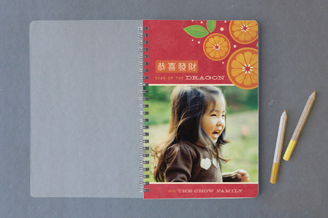 Tangerine Spray Notebooks