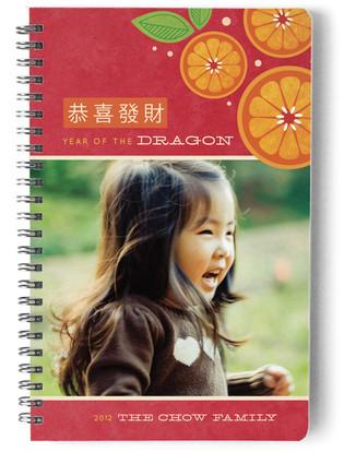 Tangerine Spray Day Planner, Notebook, or Address Book