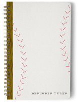 Take Me Out to the Ball Game Notebooks