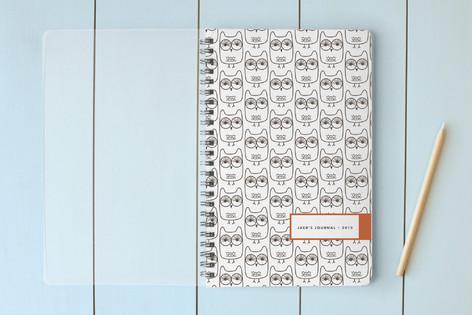 Owls Notebooks