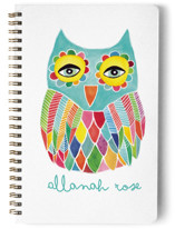 Watercolor Rainbow Owl