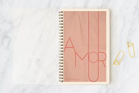 Amour Notebooks