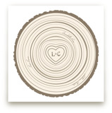Family Tree Rings