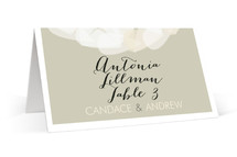 Modern Tulle Place Cards