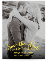 Photogenic Save The Date Postcards