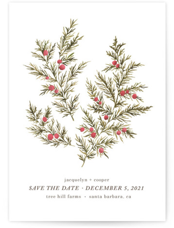 Botanical No. 4 Save The Date Cards