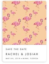 Flamingo Wedding