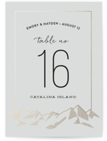 Mountain Vista Foil-Pressed Wedding Table Numbers