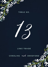 Midnight Floral Table Numbers