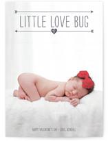 Lil Baby Love