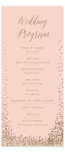 Bubbly Foil-Pressed Wedding Programs