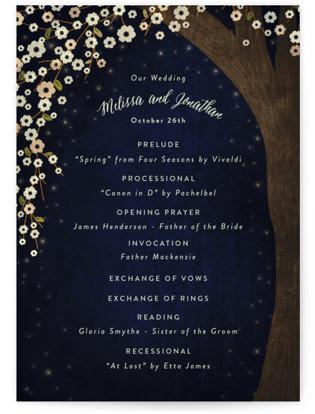 Outside Wedding Programs