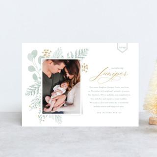 Juniper Holiday Birth Announcement Postcards