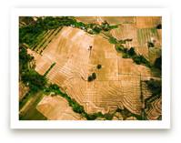 Parched Lands