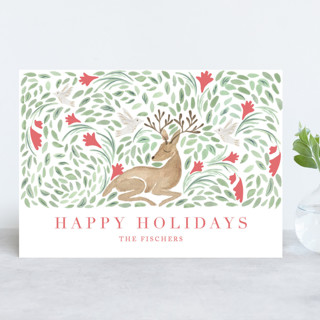 Deer Holiday Holiday Cards
