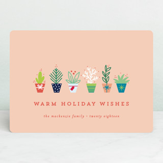 succulents Holiday Cards
