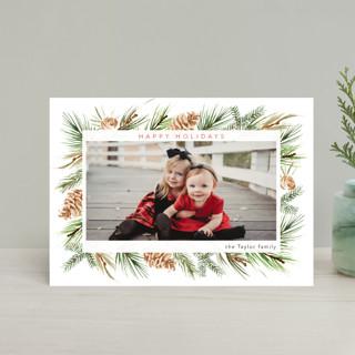 Winter Frame Holiday Postcards