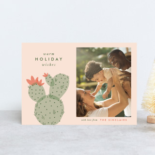 holiday cactus Holiday Postcards