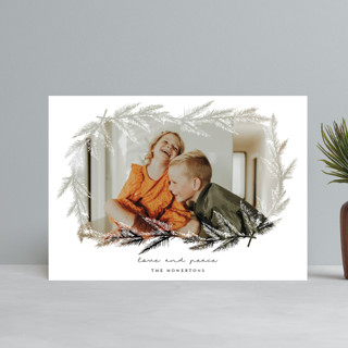 evergreen branches Holiday Postcards